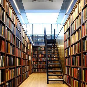 Библиотеки Рутула